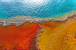 MTG programme identifier: colours that can be found in communities of bacteria in the geyser pools in Yellowstone National Park